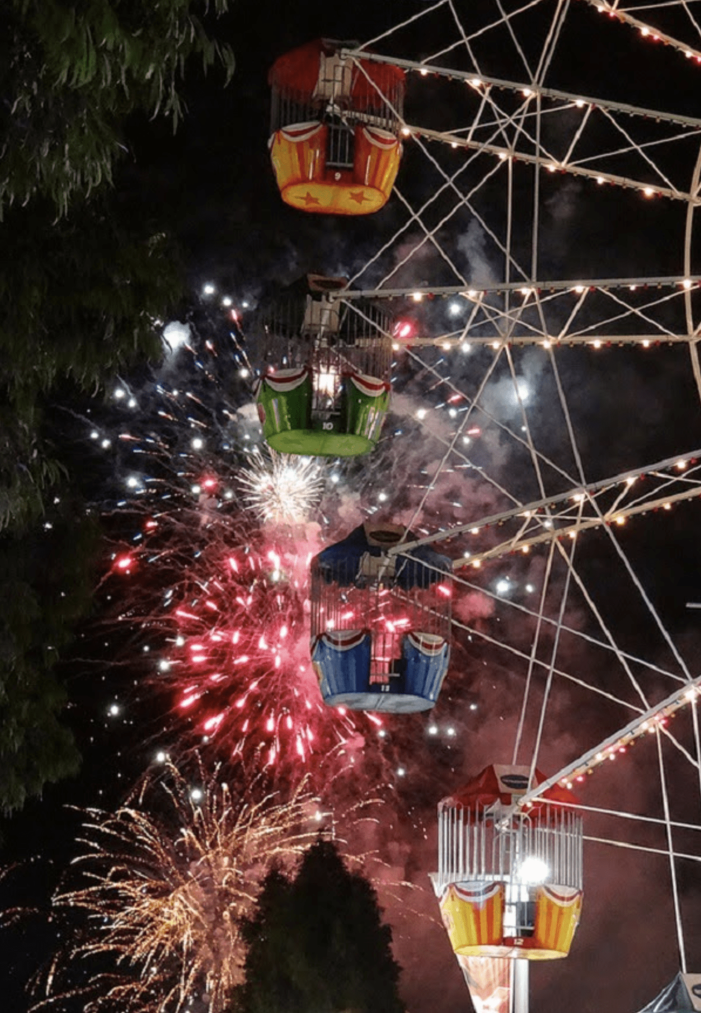 Fireworks Display at the country show grounds